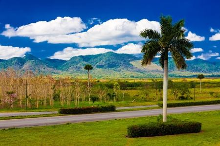 Road near the mountains of Pinar del Rio in Cuba, a natural touristic attraction and a worlwide known tobacco growing area photo