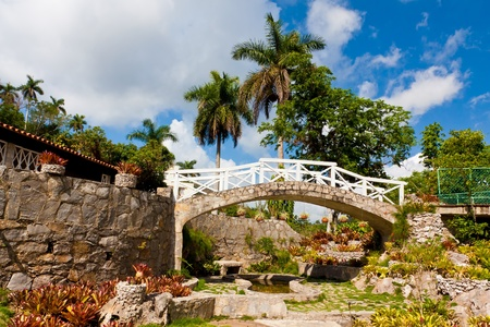 The orchids garden at the natural reserve and touristic landmark of Soroa in Cuba photo