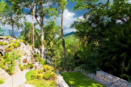 turismo ecologico: Jardín botánico en el histórico cubano natural de Soroa, una atracción turística en la hermosa campiña cubana Foto de archivo