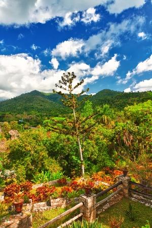 The mountains of Pinar del  in Cuba, a view from the Soroa botanic garden Stock Photo - 13126612