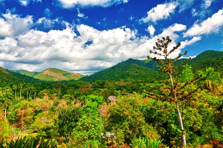Valleys and mountains in Pinar del Rio, Cuba, a natural touristic attraction and a worlwide known tobacco growing area photo