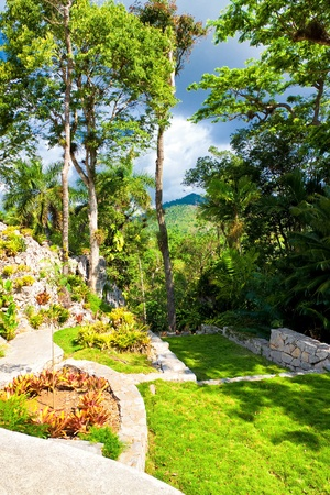 Botanic garden at the cuban natural landmark of Soroa, a beautiful touristic attraction in the cuban countryside Stock Photo - 13162497