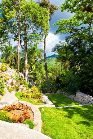 soroa: Botanic garden at the cuban natural landmark of Soroa, a beautiful touristic attraction in the cuban countryside Stock Photo