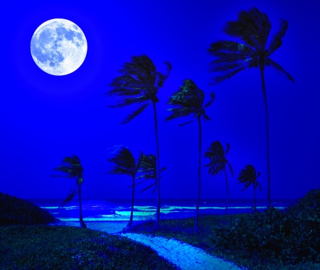Beautiful tropical beach in Cuba at night with a bright full moon over the ocean photo