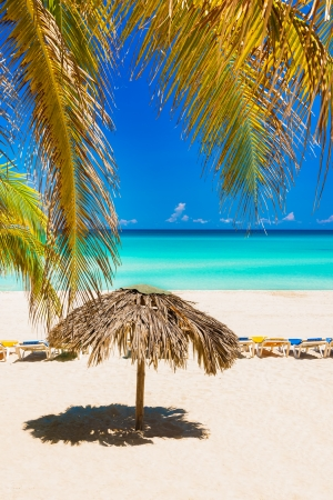 Coconut palm leaves, thatched umbrella and beach beds on the beautiful beach of Varadero in Cuba photo