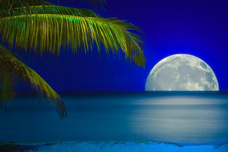 Full moon reflected on the calm water of a tropical beach Stock Photo