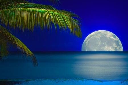 Pleine lune reflète sur l'eau calme d'une plage tropicale Banque d'images