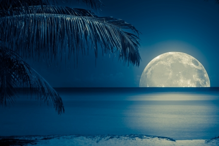 full moon romantic night: Beautiful full moon reflected on the calm water of a tropical beach (toned in blue) Stock Photo