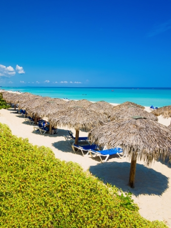 Row of thatched umbrellas at the famous Varadero beach in Cuba on a beautiful summer day  vertical orientation  photo