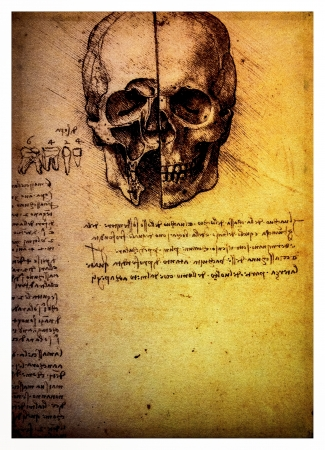 Ancient anatomical drawings made by Leonardo DaVinci, a study of a human skull