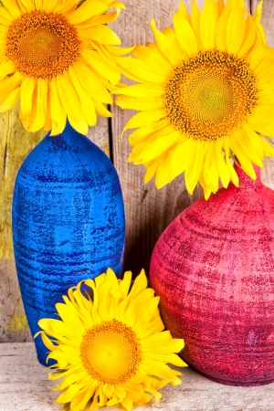 Bright yellow sunflowers on colorful vases with a wood planks background photo