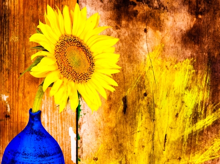 Sunflower on a blue vase with a grunge rustic wooden background Stock Photo - 18280733