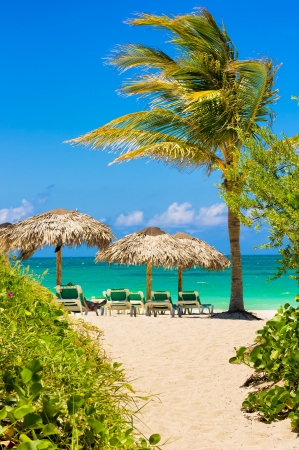 View of Varadero beach in Cuba with a coconut tree, umbrellas and beach beds Stock Photo