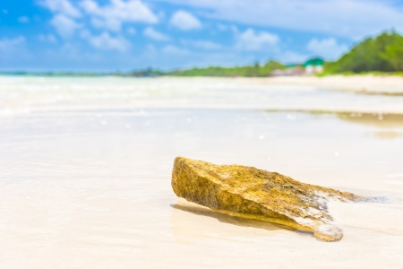 antilles: Virgin tropical beach with a rock emerging from the water at Cayo Coco  Coco key  in Cuba