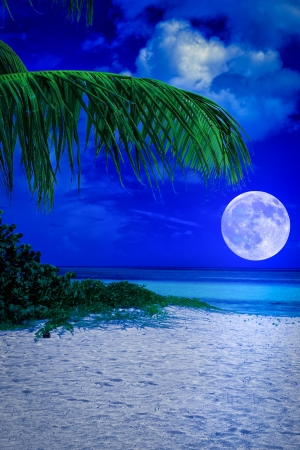 Beautiful tropical beach at night with a full moon creating reflections on the ocean photo