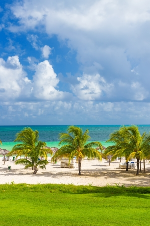coco palm: Tropical resort at the beach of Coco Key  Cayo Coco  in Cuba Stock Photo