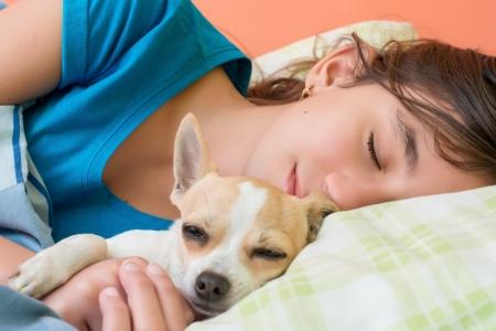 enfant qui dort: Cute girl coucher avec son petit chien chihuahua Banque d'images