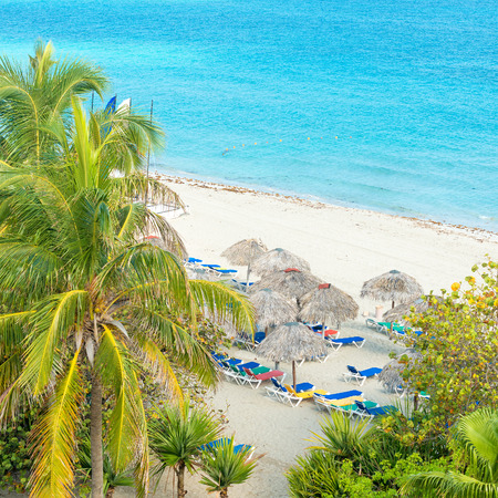 thatched: Coconut palms and thatched umbrellas at the beautiful Varadero beach in Cuba Stock Photo