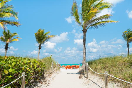 Path leading to the beach on a sunny day in South Beach, Miami photo