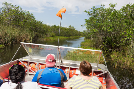 sawgrass: Tourists at an air boat tour of the Everglades with an alligator approaching