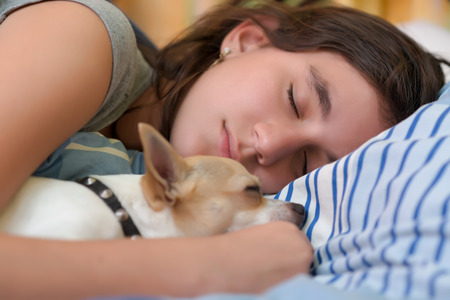 Pretty girl sleeping with her small chihuahua dog