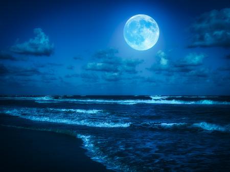 noche y luna: Playa a media noche con una luna llena brilla en el cielo