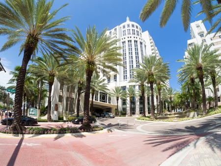 miami south beach: The luxurious Loews Miami Beach Hotel and it tropical palms garden