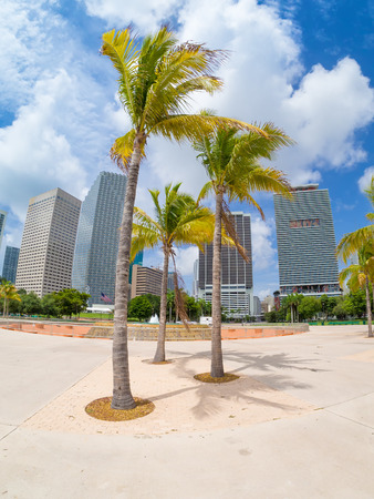 city park skyline: Bicentennial park in Miami with a view of the city skyline