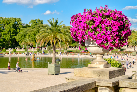 The Luxembourg Gardens in Paris on a beautiful summer day