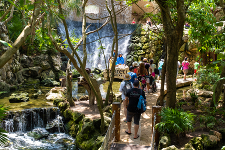 XCARET,MEXICO - APRIL 16,2019 : Visitors and waterfalls at the aviary on the XCaret park on the Mayan Riviera