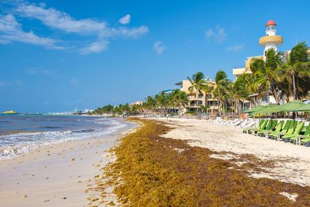 The beach at Playa del Carmen on the Mayan Riviera on a sunny summer day Фото со стока