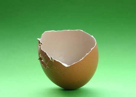 broken eggshell #3