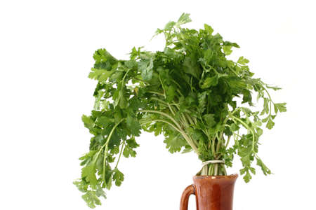 fresh parsley in vase - isolated photo