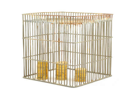 banking - coins in cage on white #2 Stock Photo - 346417