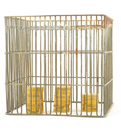 banking - coins in cage on white #3 Stock Photo - 346415