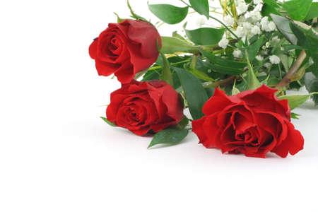 three beautiful maroon roses with decoration Stock Photo - 346357