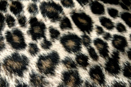 mottle: panther pattern
