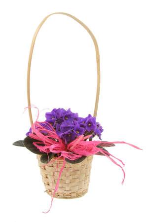 decorative basket full of violets photo