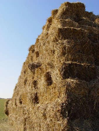 hay stack photo