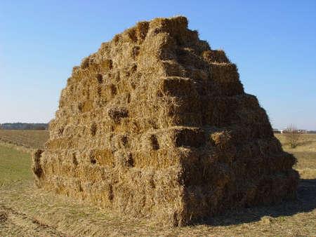 hay stack #2 photo