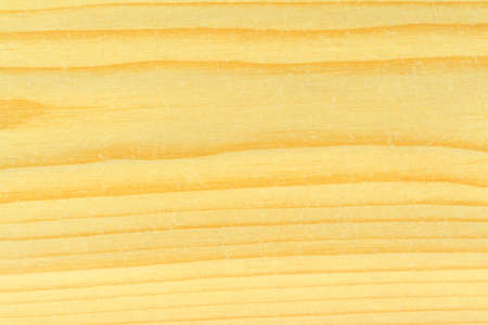 bright pine wood texture