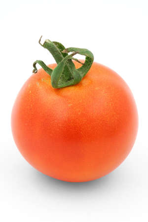 gorgeous tomato on white Stock Photo - 486955