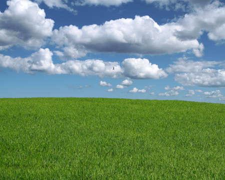 gorgeous landscape Stock Photo - 525108
