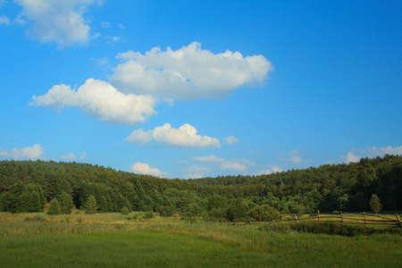 summer landscape Stock Photo - 525127