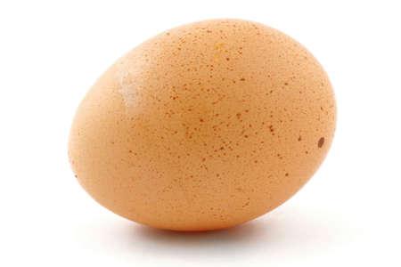 free-range egg Stock Photo