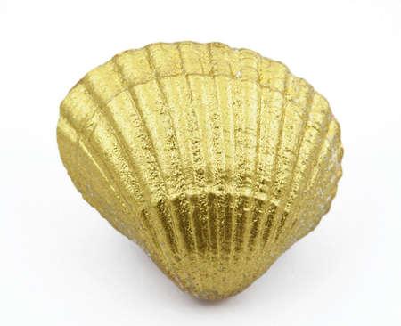 exotic gleam: golden sea shell Stock Photo