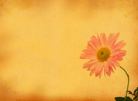 scabrous: retro background with flower motive Stock Photo