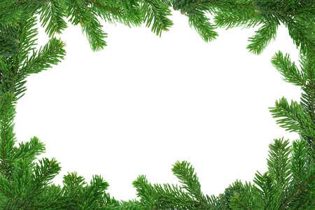 xxl image of spruce twig frame Stock Photo - 700494