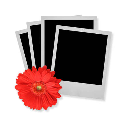 stack of photo frames with flower