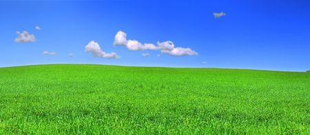 prachtig panoramisch uitzicht over vreedzame grasland, blauwe hemel boven Stockfoto